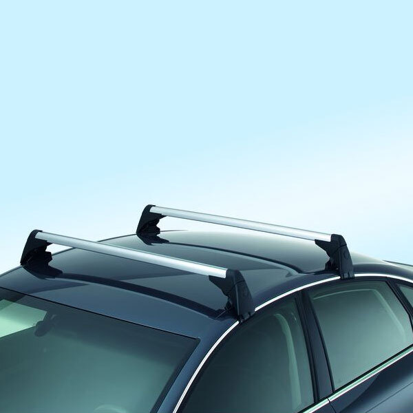 Carrier unit, for vehicles without roof rails
