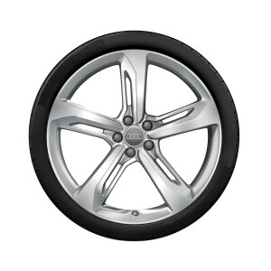 Complete winter wheel in 5-arm blade design, high-gloss, 9 J x 21, 275/30 R 21 98W XL, right