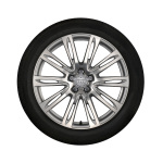 Complete winter wheel in 10-parallel-spoke design, brilliant silver, 9 J x 20, 265/40 R20 104V, left