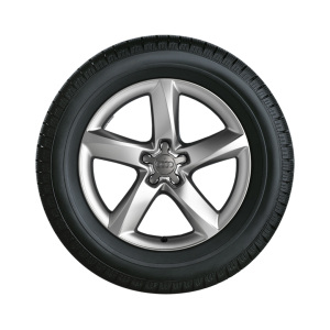 Complete winter wheel in 5-arm design, brilliant silver, 7.5 J x 19, 235/50 R 19 103H XL, left