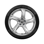 Complete summer wheel in 5-arm design, galvanic silver, metallic, 8.5 J x 19, 245/45 R 19 102Y XL