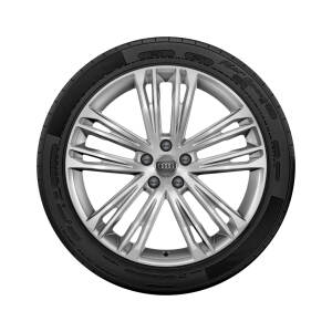 Complete winter wheel in 5-twin-spoke V design, brilliant silver, 8.5 J x 20, 255/40 R20 101W XL, left