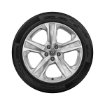 Complete winter wheel in 5-arm dynamic design, brilliant silver, 8 J x 19, 245/45 R19 102V XL, left