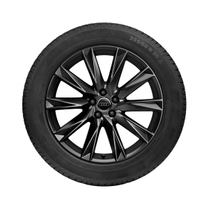 Complete winter wheel in 10-spoke lamina design, black-gloss finish, 9 J x 20, 255/50 R 20 109H XL
