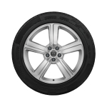 Complete winter wheel in 5-arm design, galvanic silver, metallic, 9 J x 20, 255/50 R 20 109H XL, right
