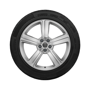 Complete winter wheel in 5-arm design, galvanic silver, metallic, 9 J x 20, 255/50 R 20 109H XL, left