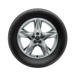 Complete winter wheel in 5-spoke star design, brilliant silver, 8 J x 19, 255/55 R 19 111H XL, right
