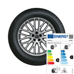 Complete winter wheel in 10-Y-spoke design, galvanic silver, metallic, 9 J x 20, 285/45 R20 112V XL, right