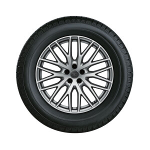 Complete winter wheel in 10-Y-spoke design, galvanic silver, metallic, 9 J x 20, 285/45 R 20 112V XL, left