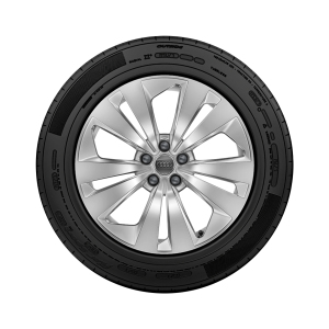 Complete winter wheel in 5-arm aero design, brilliant silver, 8.5 J x 19, 265/55 R 19 113H XL
