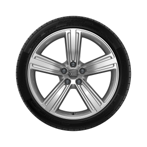 Complete winter wheel in 5-arm design, brilliant silver, 8 J x 19, 235/50 R19 103H XL, right