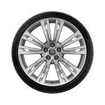 Complete winter wheel in 10-parallel-spoke design, brilliant silver, 9 J x 20, 265/40 R20 104V XL, left