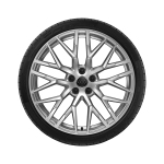 Complete winter wheel in 10-spoke Y design, galvanic silver, metallic, 11 J x 20, 295/30 R 20 101W XL, rear