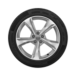 Complete winter wheel in 5-spoke dynamic design, brilliant silver,  7 J x 19, 235/55 R 19 101H