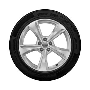 Complete winter wheel in 5-spoke dynamic design, brilliant silver,  7 J x 19, 235/55 R19 101H, right