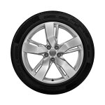 Complete winter wheel in 5-arm wing design, brilliant silver,  8 J x 19, 235/55 R19 101H, left