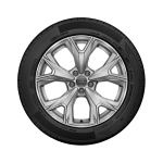Complete winter wheel in 5-Y-spoke design, brilliant silver, 7 J x 17, 205/55 R 17 95V XL