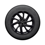 Complete winter wheel in 10-spoke turbine design, black-gloss finish, 6.5 J x 16, 195/55 R 16 91V XL, left