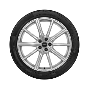 Complete winter wheel in 10-spoke star design, galvanic silver, metallic, 8.5 J x 20, 255/40 R 20 101W XL