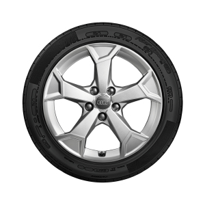 Complete winter wheel in 5-arm secare design, brilliant silver, 6.5 J x 17, 215/65 R 17 99H