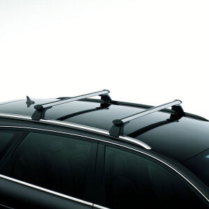 Carrier unit, silver, for vehicles with roof rails