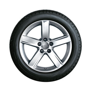 Complete winter wheel in 5-arm design, brilliant silver, 7 J x 17, 225/50 R17 94H