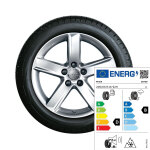 Complete winter wheel in 5-arm design, brilliant silver, 7 J x 16, 205/60 R16 92H