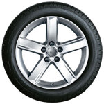 Winterkomplettrad im 5-Arm-Design, brillantsilber, 7 J x 17, 225/50 R 17 98T XL, mit Spikes, links