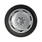 Complete steel winter wheel with full wheel cover, brilliant silver, 6 J x 16, 205/55 R16 91H, right