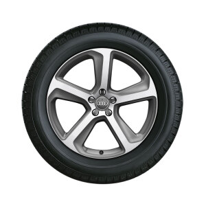 Complete winter wheel in 5-arm design, brilliant silver, 8.5 J x 20, 255/45 R20 101V, right