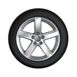 Complete winter wheel in 5-arm design, brilliant silver, 7.5 J x 17, 225/50 R17 94H