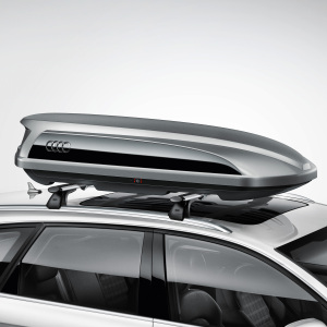 Ski and luggage box, platinum grey with brilliant black side blade, 300 l
