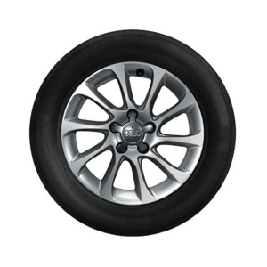 Complete winter wheel in 10-spoke design, brilliant silver, 6 J x 16, 205/55 R16 91H