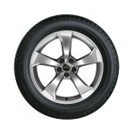 Complete winter wheel in 5-arm rotor design, galvanic silver, metallic,  8 J x 19, 235/35 R19 91V XL, right