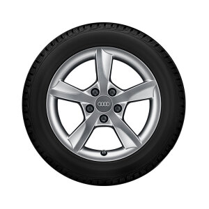 Complete winter wheel in 5-arm rotor design, brilliant silver, 6 J x 16, 205/55 R16 91H, left
