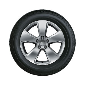 Complete winter wheel in 5-arm design, brilliant silver, 6 J x 17, 205/50 R17 93H XL, left