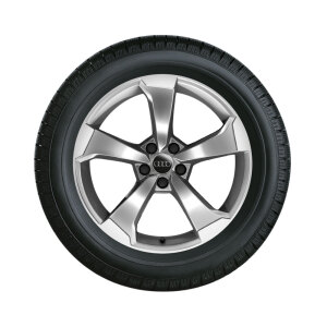 Complete winter wheel in 5-arm rotor design, galvanic silver, metallic,  8 J x 19, 235/35 R19 91V XL, left