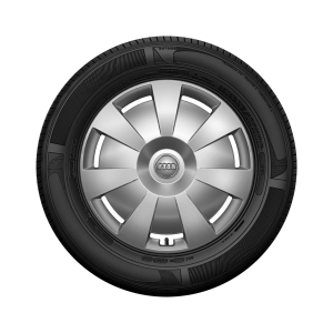 Complete steel winter wheel with full wheel cover, brilliant silver, 6 J x 16, 205/55 R16 91H, left