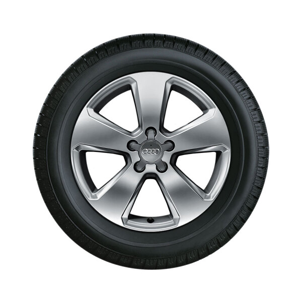 Complete winter wheel in 5-arm design, brilliant silver, 6.5 J x 17, 205/50 R17 93H XL, right