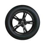 Complete summer wheel in 5-arm ramus design, black, 8.5 J x 19, 255/35 R 19 96Y XL