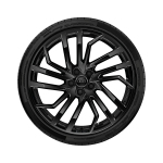 Wheel, 5-segment-spoke, black, 9.0Jx20, winter tyre 275/30 R20 97W XL