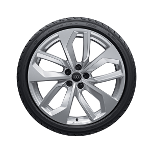Complete winter wheel in 5-twin-spoke edge design, galvanic silver, metallic, 9 J x 20, 275/30 R20 97W XL