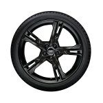 Complete winter wheel in 5-arm ramus design, black-gloss finish, 8.5 J x 19, 255/35 R19 96V XL