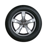 Complete winter wheel in 5-arm pin design, brilliant silver, 6 J x 16, 195/50 R16 88H XL
