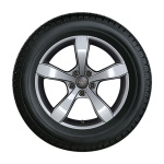 Complete winter wheel in 5-arm pin design, brilliant silver, 6 J x 15, 185/60 R15 88H XL