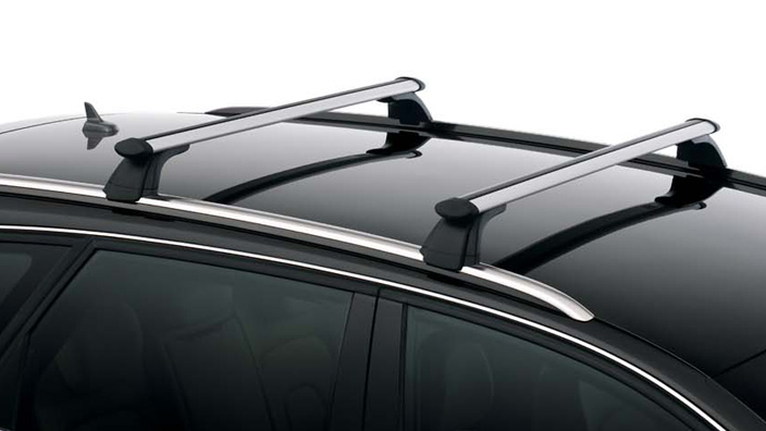 Carrier unit, black, for vehicles with roof rails